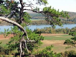 Arkansas River 2011-1