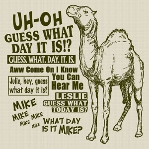 Camel Guess what day it is