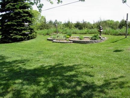 Minnesota Backyard