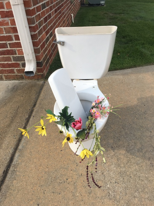 toliet-old-but-pretty-at-that