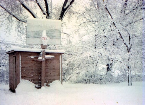 Elmquist shed, BB hoop, cottonwood trees in snow